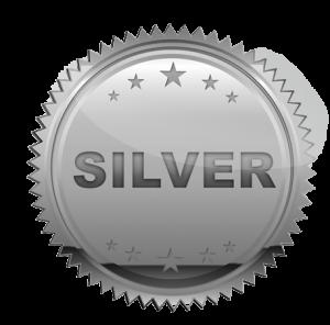 Silver SEO